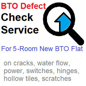 Defect Check Service for 5-rm New BTO Flat