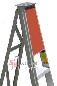 Safety Ladder Singapore