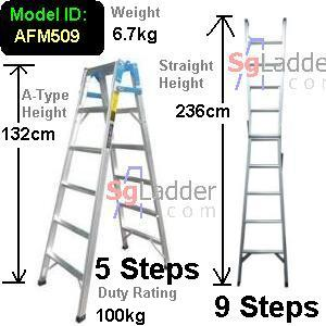 5-9 Step 2-Way Combination Lader