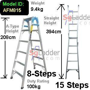 8-15 Step 2-Way Combination Lader